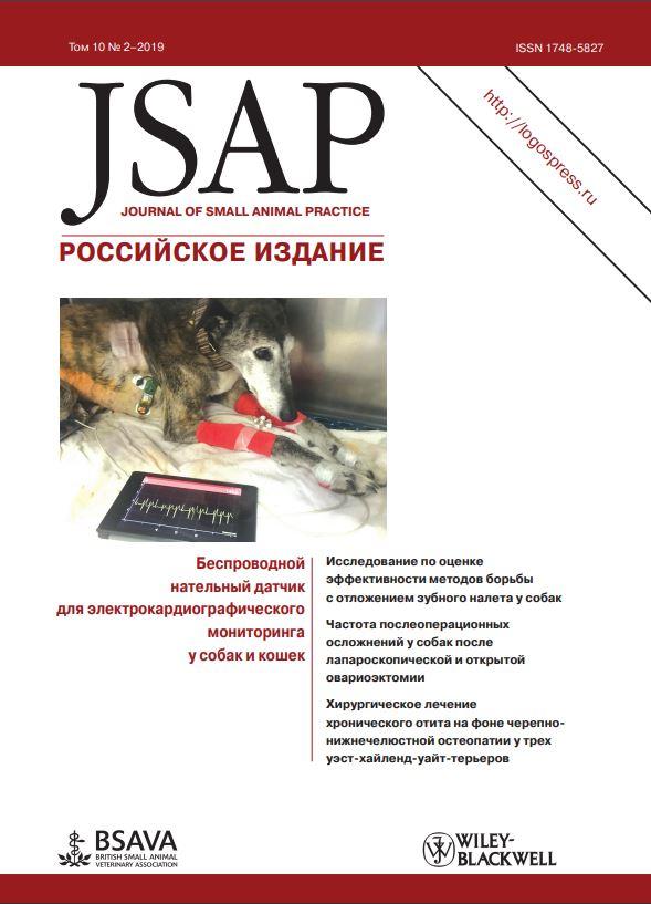 JSAP #2-2019