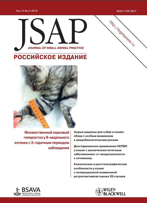 JSAP #3-2019