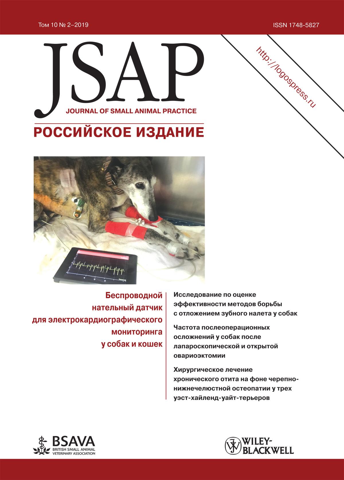 JSAP №2-2019