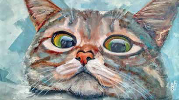 Не можешь стричь — не мучай кошку