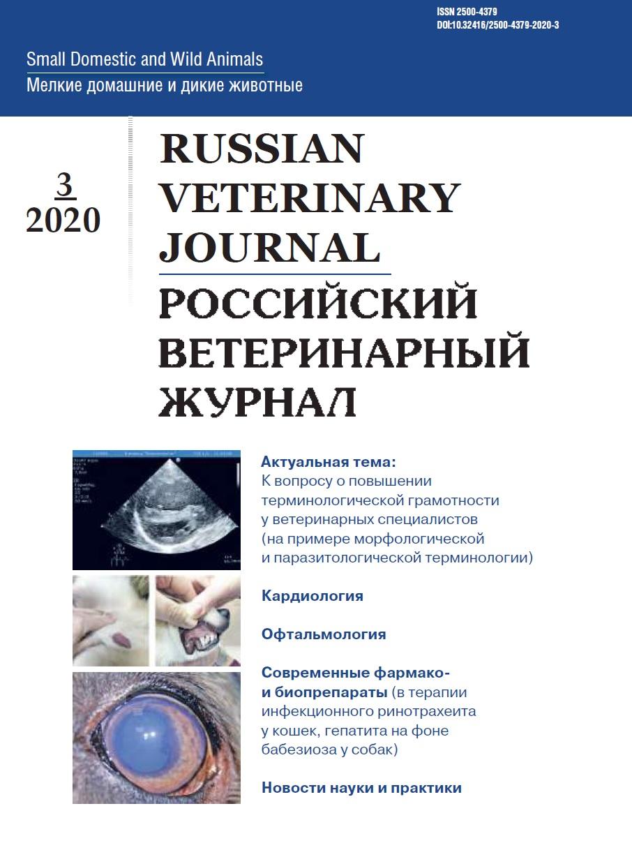 РВЖ МДЖ 2020/3