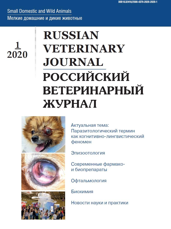 РВЖ МДЖ - 2020/1