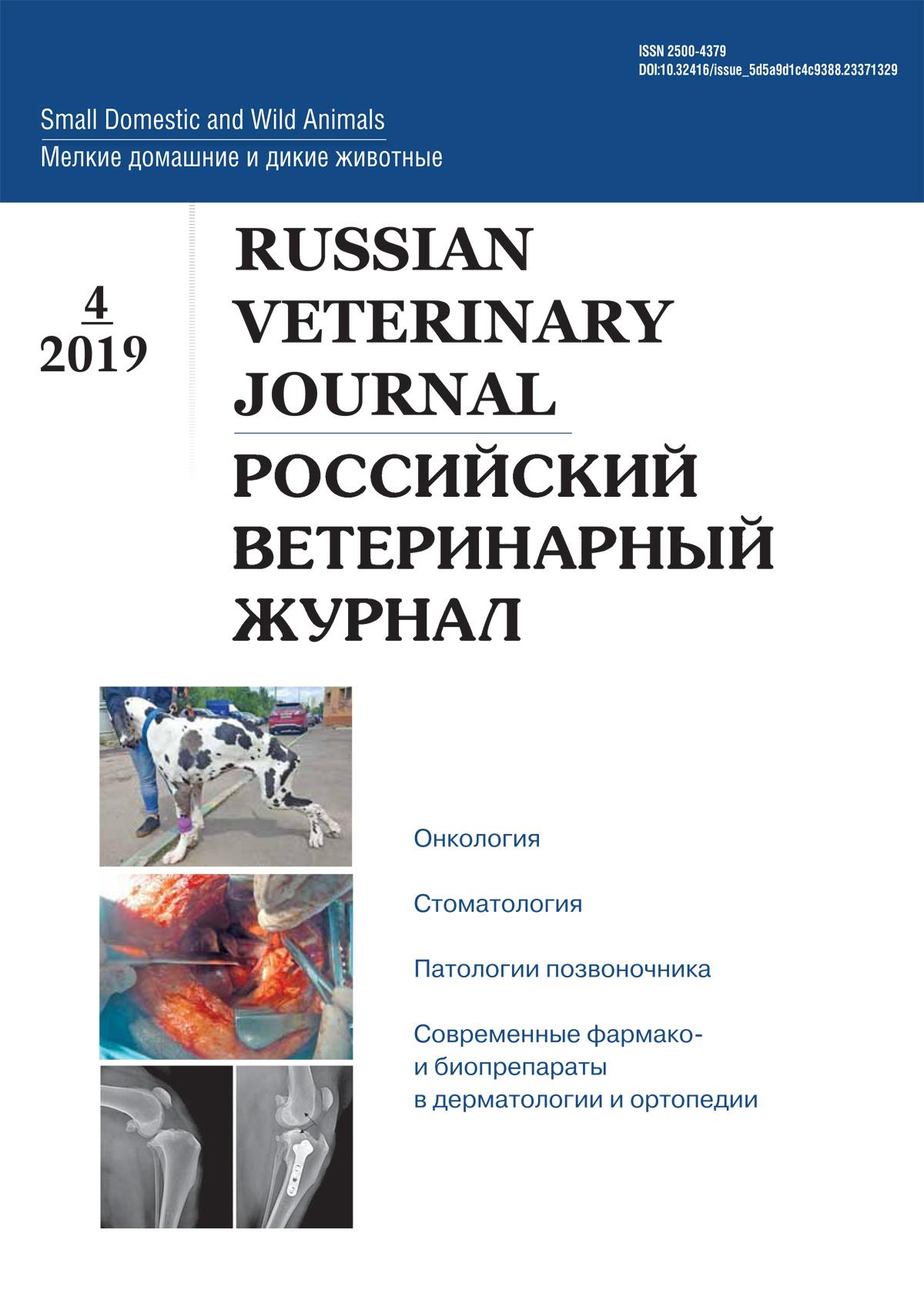 РВЖ МДЖ №4-2019