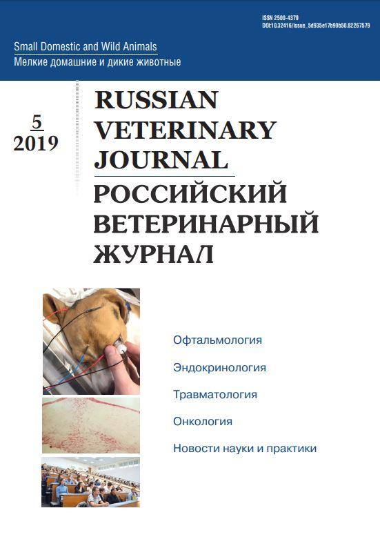 РВЖ МДЖ #5-2019